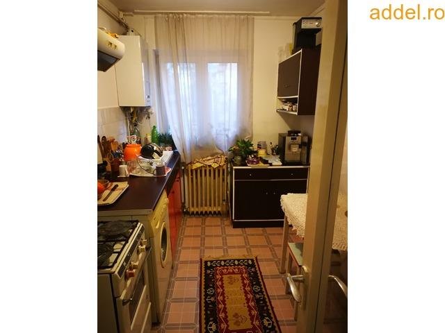 Elado 2 szobas tombhazlakas - 1
