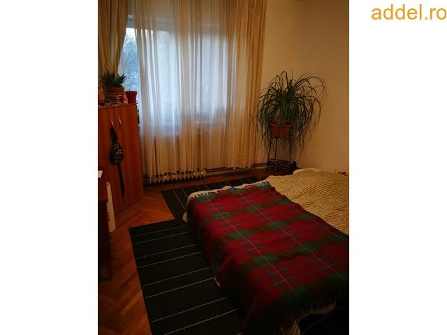 Elado 2 szobas tombhazlakas - 2