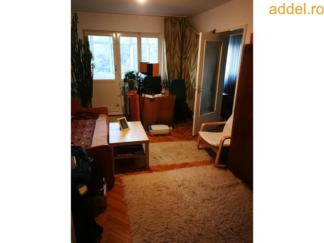 Elado 2 szobas tombhazlakas - 3